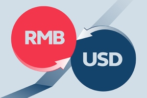 RMB Currency Options